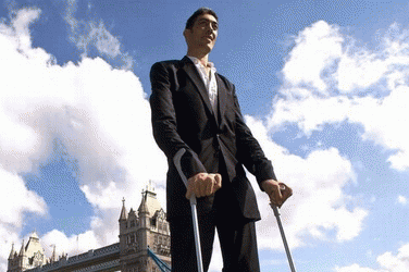 OFFICIALLY: THE WORLD'S TALLEST MAN